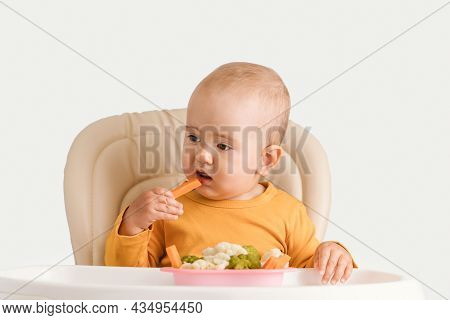 A Baby Eats Boiled Carrots While Sitting On A Feeding Chair. Baby Food In A Vegan Family