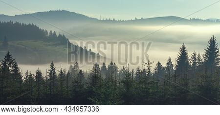 Misty Foggy Mountain Landscape With Fir Forest And Copyspace In Vintage Retro Style
