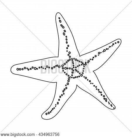 Sea Starfish Vector Outline Icon. Vector Illustration Star Sea On White Background. Isolated Outline