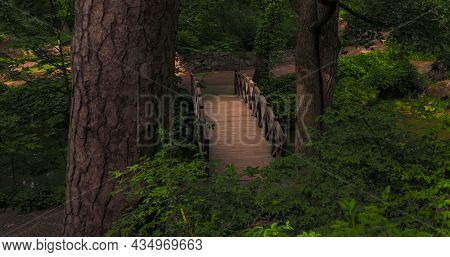 Fable Majestic Wanderlust Scenery Place Of Country Side Park Land With Foot Path And Arch Shape Wood