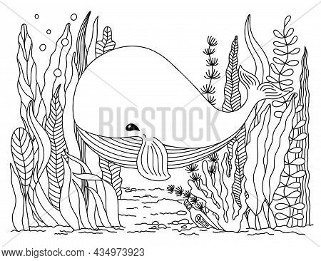 Cute Cartoon Whale On The Seabed With Seaweeds. Hand Drawn Outline Wild Underwater Animal And Plants