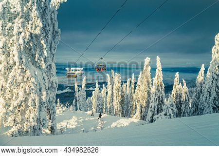 Skiers On The Ski Lift In The Snowy Forest. Majestic Ski Resort With Snowy Pine Trees And Skiers On