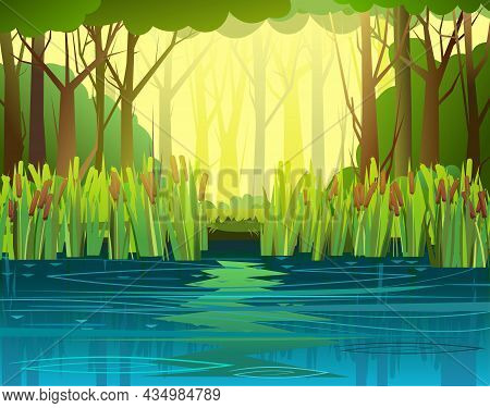 Summer Forest Landscape. Swampy Coast With Cattails And Reed. Flat Style. Quiet River Or Lake. Wild