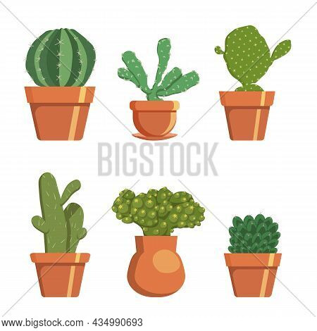 Set Of Decorative Cacti In Pots, Homemade Prickly Plant