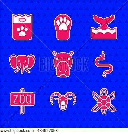 Set Hippo Or Hippopotamus, Head Of Goat Ram, Turtle, Snake, Zoo Park, Elephant, Whale Tail In Ocean