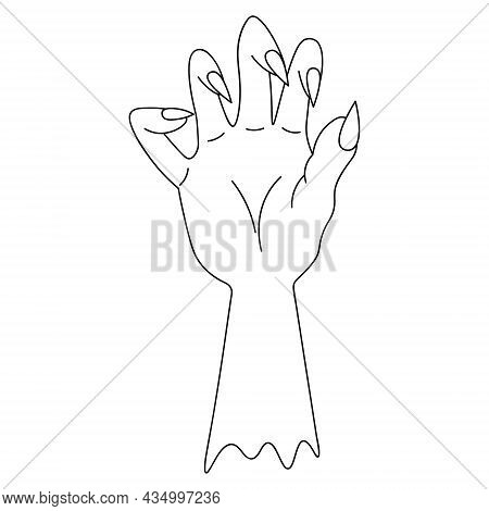 The Stump Of A Dead Man's Hand. Sketch. Curved Fingers With Sharp Claws. Vector Illustration. Outlin