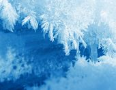 Frosty snow flakes closeup macro blue white background poster