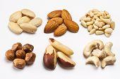 Almonds bleached almonds hazelnuts brazil nuts cashew nuts pine nuts poster