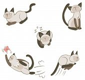 Siamese cat in various action create by vector poster