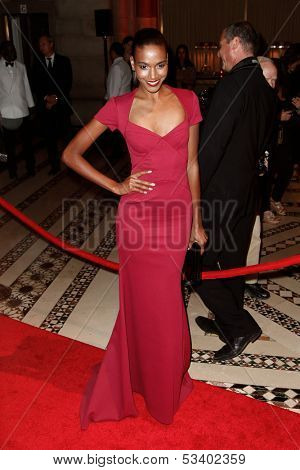 NEW YORK-SEP 17: Model Arlenis Sosa attends the 14th annual New Yorkers For Children Fall Gala at Cipriani 42nd Street on September 17, 2013 in New York City