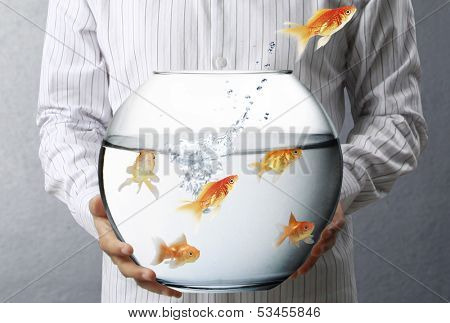 Business man flying goldfishes from one to another