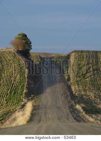 Palouse Roads