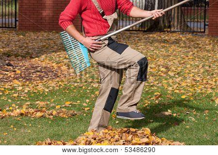Gardener pretending that his playing guitar during raking leaves poster