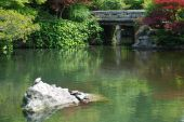 The gardens of Eikando Temple in Kyoto with two terrapins resting on a rock in one of the pools poster