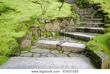 Curving stone stairway with surrounding moss covered grounds