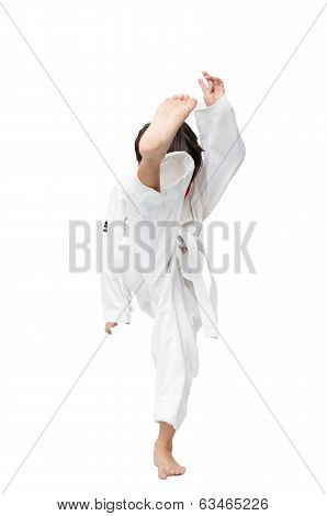 Little Tae Kwon Do Boy Doing Martial Art