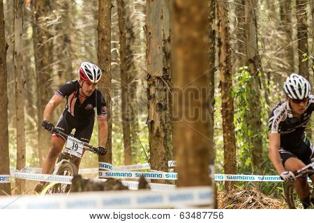 Racing through the trees