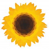 Sunflower icon with triangular polygons on white background poster