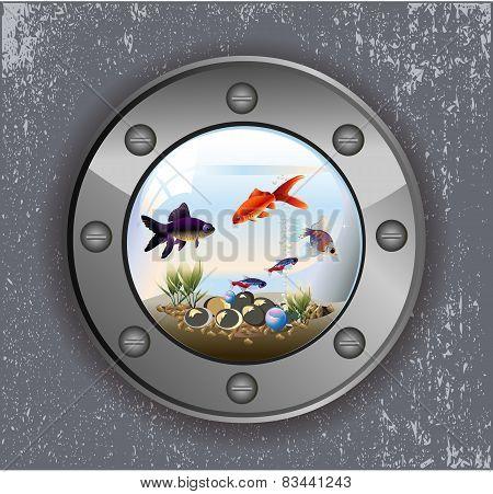 Batiskaf window aquarium