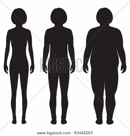 vector fat body, weight loss,
