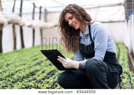 Greenhouse produce. Food production.