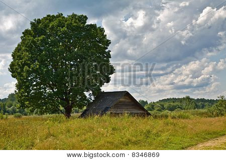 old cottage built in the field