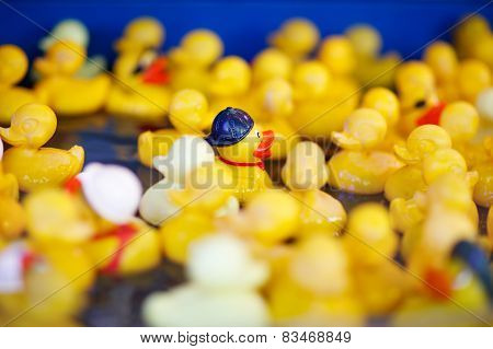 Group Of Yellow Rubber Ducks On Fair Market, For Playing Games With Kids