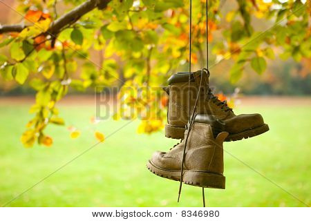 Old Boots In Autumn