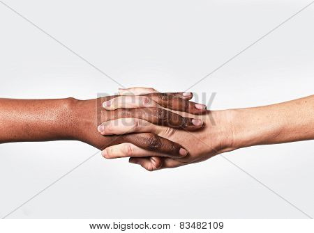 White Caucasian Female Hand And Black African American Holding Fingers World Diversity Love