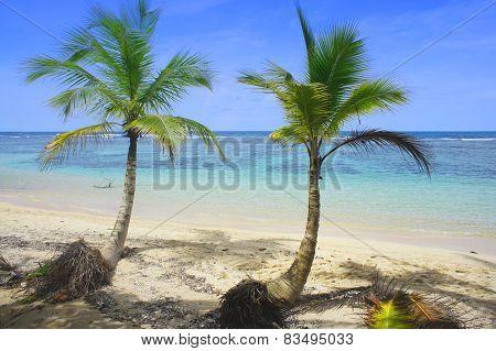 summer in costa rica