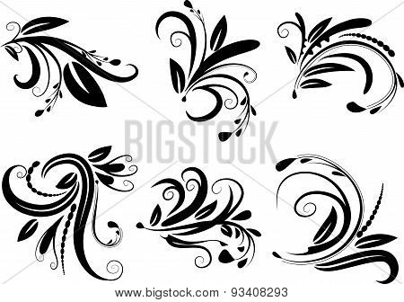 Calligraphic decorative elements with lines