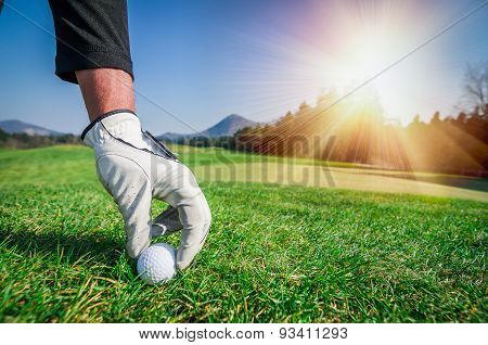 Hand With A Glove Is Placing A Golf Ball On The Ground.