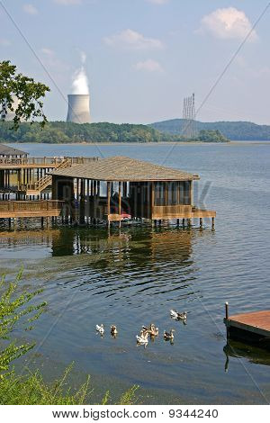 Sequoyah Nuclear Plant and Ducks