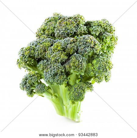 poster of Broccoli close up on a white background