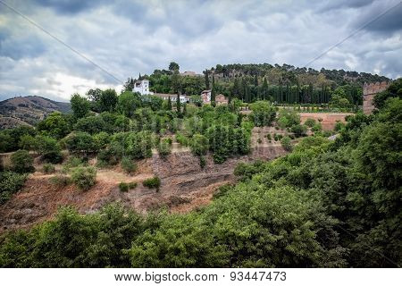 View Of Generalife And The Gardens