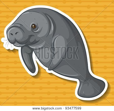 Close up sea cow swimming alone