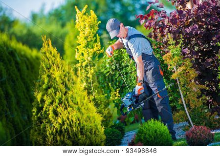 Firing Up Gasoline Hedge Trimmer by Professional Gardener. Garden Works. Trimming Hedge. poster