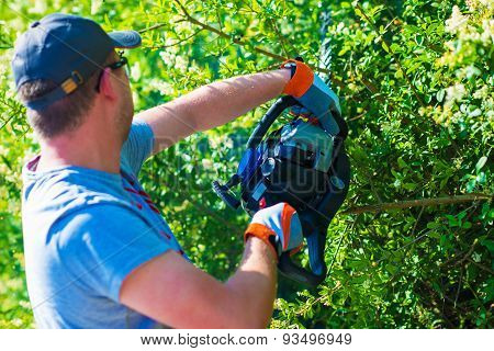 Men Trimming Hedge Using Powerful Gasoline Hedge Trimmer. poster