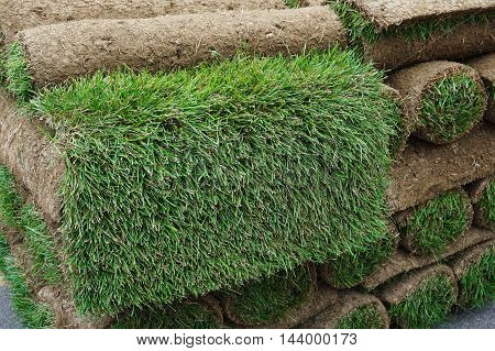close up on stacking turf sod carpet