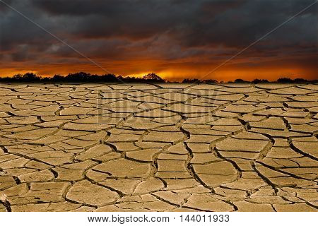 Conceptual image symbolizing negative consequences of global warming leading to destroying the natural ecosystems