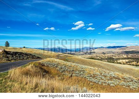 Road And Yellowstone Landscape
