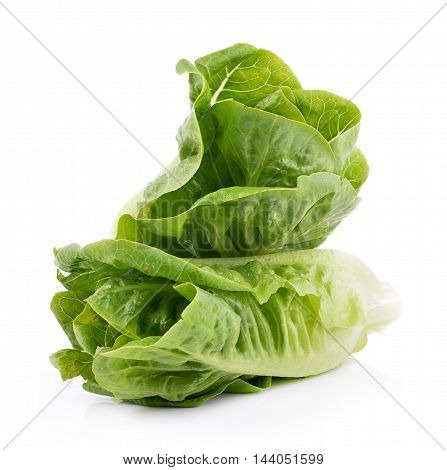 Closeup fresh cos (lettuce) on white background