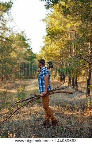 Lumberjack with an ax and firewood goes through the forest. Woodcutter in plaid shirt chopped wood for the fire. Felling trees. Logging. Manual labor.