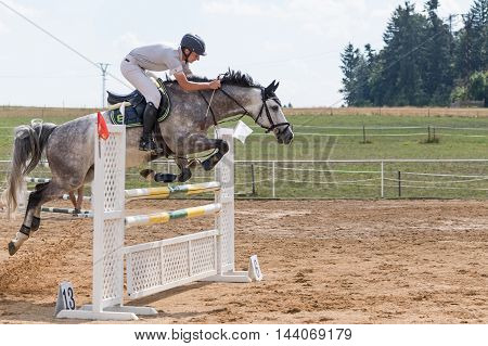 SVEBOHOV CZECH REPUBLIC - AUG 20: Side view of horseman jumping a roan horse at