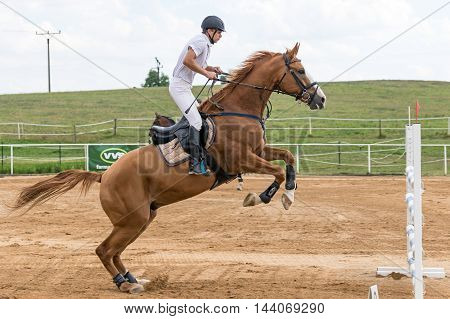 SVEBOHOV CZECH REPUBLIC - AUG 20: Side view of horseman in white during the high jump on a brown horse at