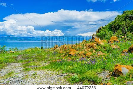 The bright orange boulders covered with lichen and moss on the meadow among the colored flowers on the bank of Sevan Lake Hayravank Armenia.