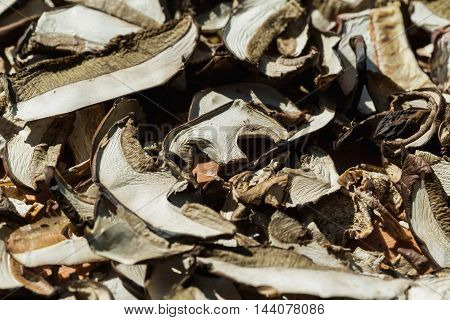 Heap of dried edible mushrooms on the market. Dried and sliced edible mushroms. Food concept.