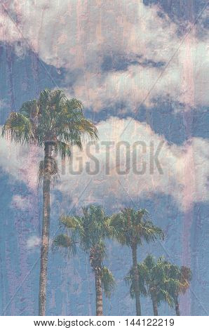 Image of palm trees with blue sky and texture