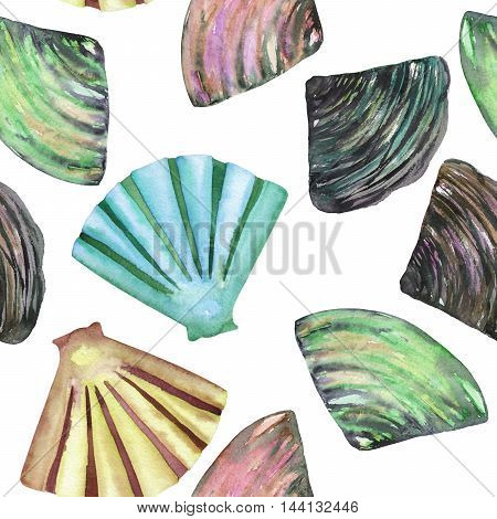 A seamless pattern with the isolated shells and mussels, painted in a watercolor on a white background