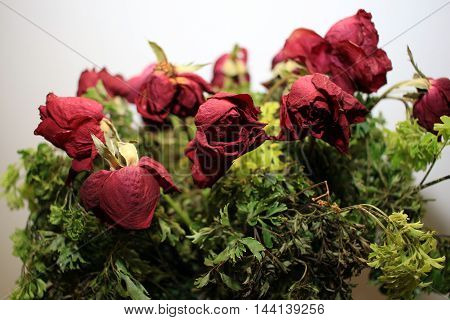 A bouquet of wilted rose isolated on white background